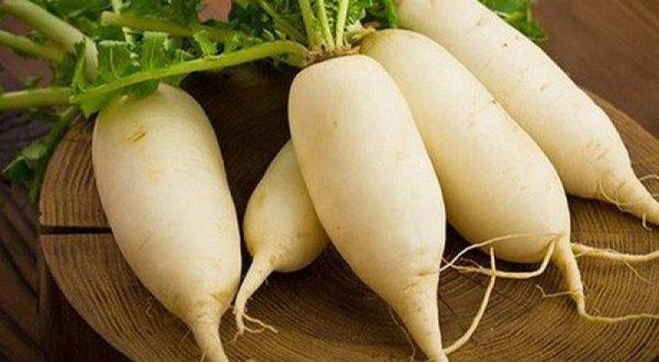 Củ cải trắng có tác dụng gì? Trồng khó không?