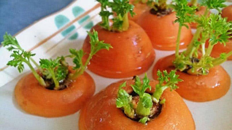 Cách trồng cà rốt tại nhà bằng đầu củ và hạt siêu đơn giản